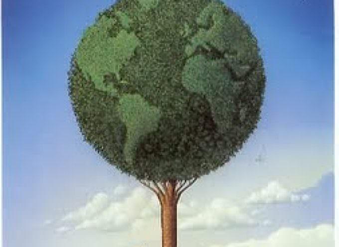 Agricoltura sostenibile: Una via etica alla crescita economica