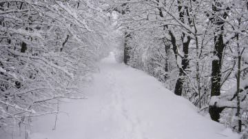Maltempo: Coldiretti, con +39% neve e pioggia da record in 30 anni