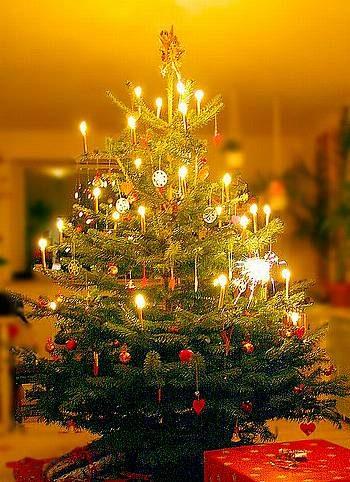 Natale: Coldiretti, i primati agricoltura italiana sotto l'albero di Assisi