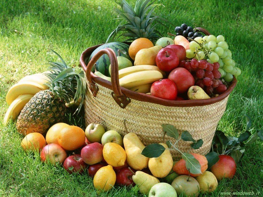 Post dieta: fibre e proteine non fanno riprendere peso