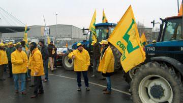 Latte: Coldiretti, riapre trattativa prezzi con assedio allevatori