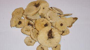 Le erbe cinesi favoriscono il cancro alla vescica