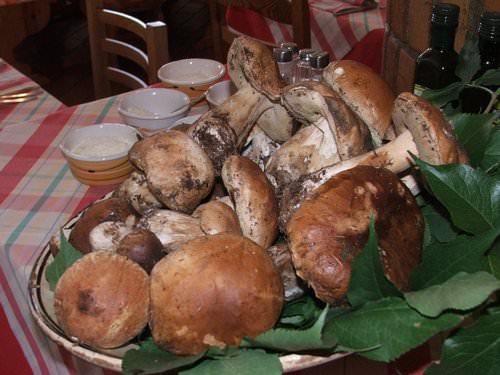 Agriturismo: si alla ristorazione tipica, la riforma è legge