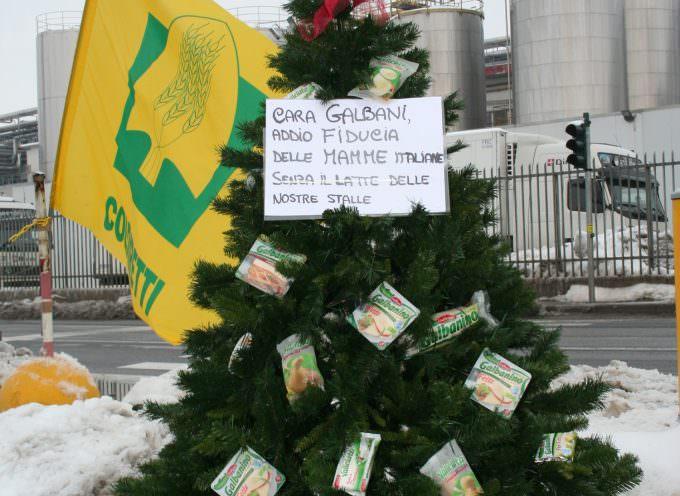 Natale: Coldiretti, allevatori piantano alberi davanti industrie latte