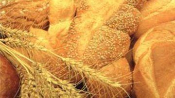 Banco Alimentare: Un progetto per redistribuire il pane invenduto