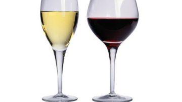 Nuove risorse per la promozione dei vini marchigiani