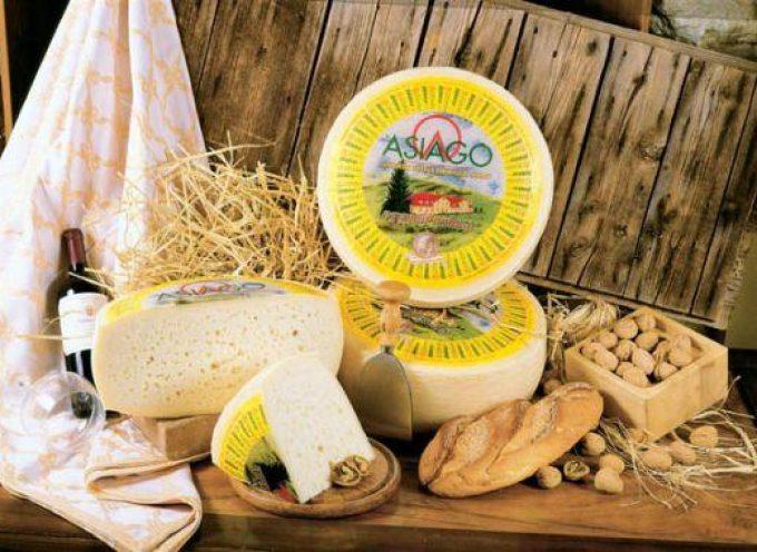 Questo Asiago… olè! Trionfo in Spagna per il formaggio Dop veneto-trentino
