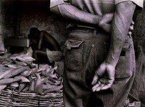Lavoro nero: Il 12% dell'occupazione in Italia è sommersa