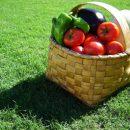 Consumi a tutto Bio in crescita, in tutta Europa, meglio se i prodotti biologici sono certificati