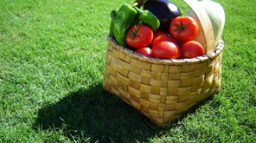 Verdura biologica? Meno nutriente e saporita di quella tradizionale