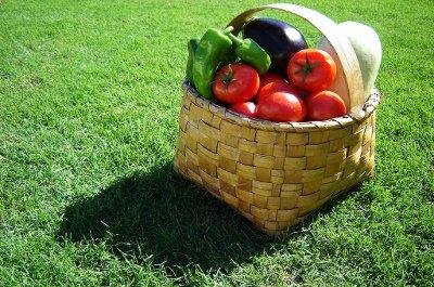 Maltempo: Coldiretti, allarme gelo per verdure e ortaggi
