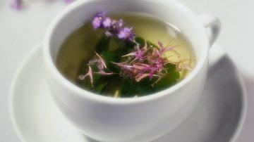 Il tè verde riduce gli zuccheri del sangue