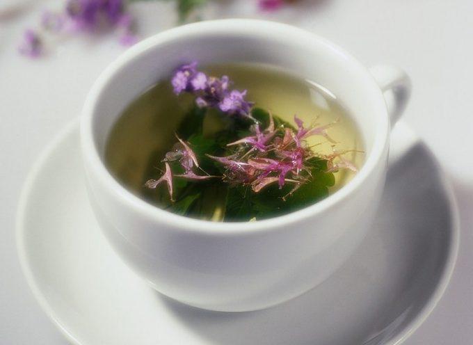 Il tè verde: una difesa contro il cancro ai polmoni