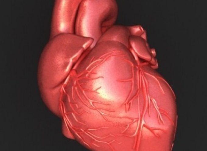 Gli ormoni maschili proteggono il cuore