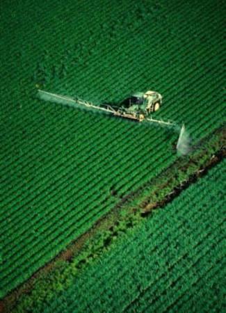 Pesticidi nel piatto: In aumento i pesticidi nei cibi che consumiamo