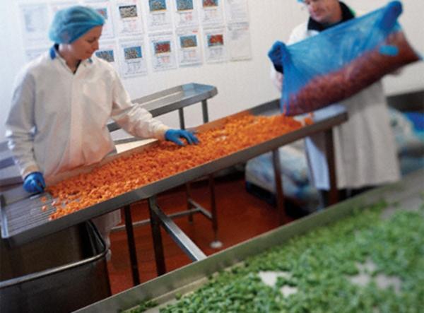 Industria alimentare: Nonostante con la crisi il comparto regge e cresce