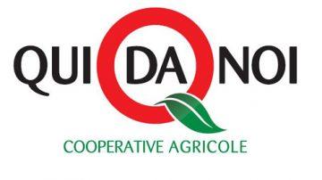 """Agroalimentare, fare la spesa in cooperativa: nascono i negozi """"Qui da Noi"""""""