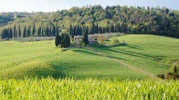 Mafia: Coldiretti, tornano a legalità oltre 2000 terreni confiscati