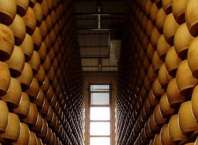 Parmigiano-Reggiano: ripartono i ritiri dell'Agea e del consorzio