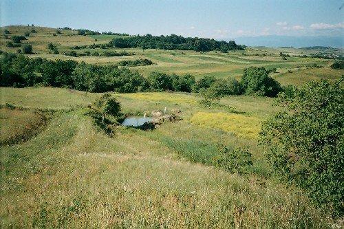 """""""Milleproroghe"""": cresce il valore dei terreni agricoli"""