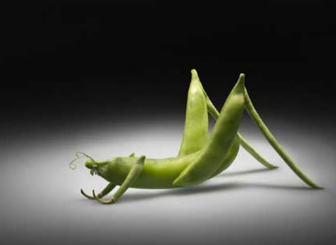 OGM: Marini (Coldiretti), incoraggiati da Santa sede