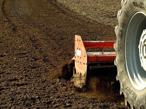 OGM: Coldiretti, intervento forze dell'ordine se si semina senza autorizzazione