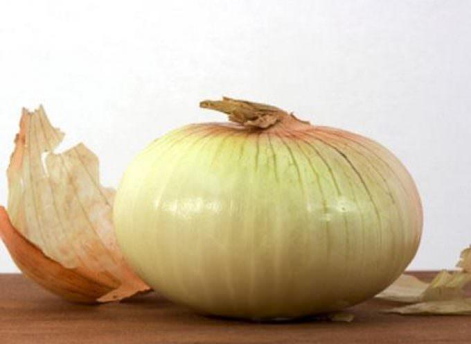 Cipolla: nei suoi scarti, nutrienti buoni