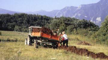 """Crisi: tre imprese agricole su cinque con bilanci """"in rosso"""""""