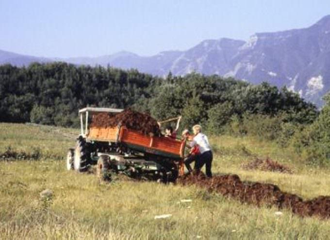 Confagricoltura: impegno attivo delle imprese agricole per la biodiversità e lo sviluppo sostenibile