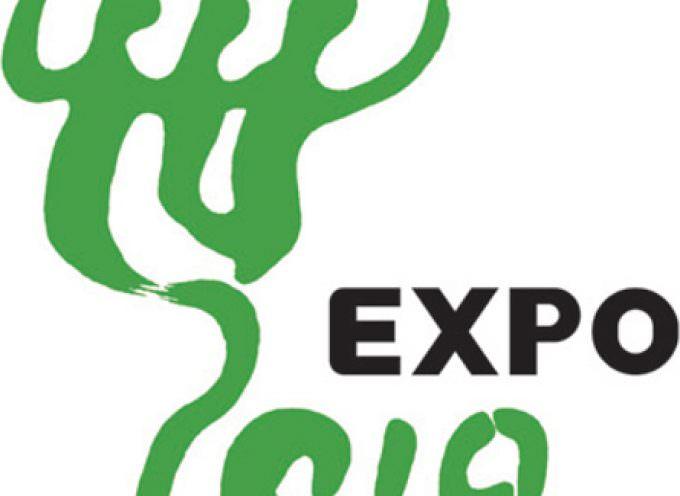 """Expo 2010: l'Enoteca Italiana sceglierà il top del vino """"made in italy"""""""