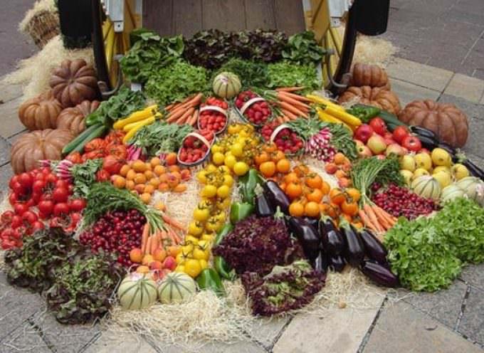Agricoltura: Dare maggior sostegno al biologico