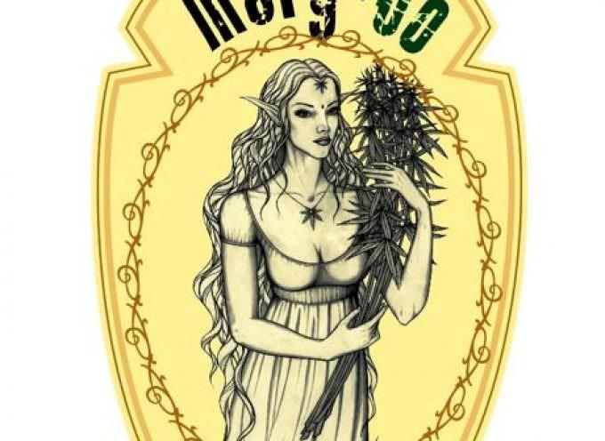 Mary-Jo, birra amaricante alla Canapa o contiene anche sostanze proibite?