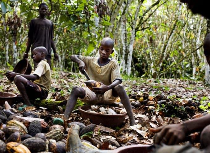 Africa. Gli schiavi bambini delle piantagioni di cacao