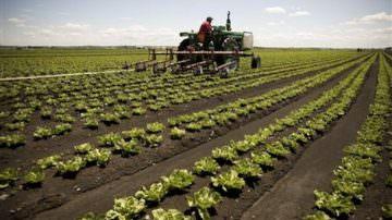 Milano: Ferrazzi promuove l'agricoltura sociale
