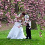 Una formula matematica per il matrimonio perfetto