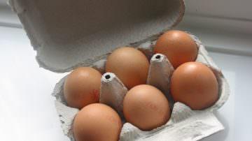 """Uova di gallina. La LAV contro le etichette: """"Informazioni fuorvianti ed ambigue"""""""
