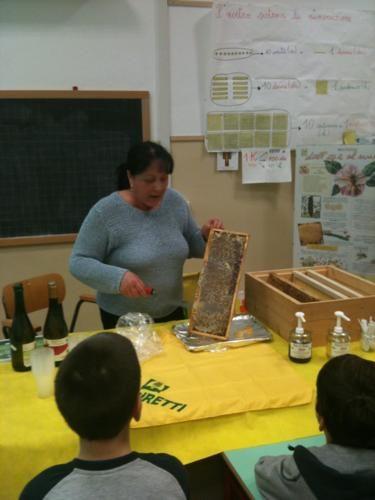 Coldiretti: Dalle api al miele, lezioni di alimentazione e territorio a Quartesana