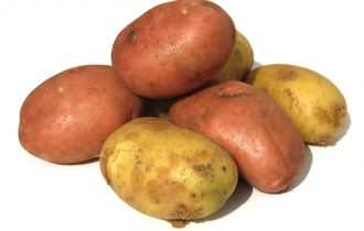 8 italiani su 10 contrari alla patata Ogm