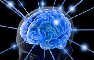 Dieta MIND, un aiuto contro demenza ed ictus