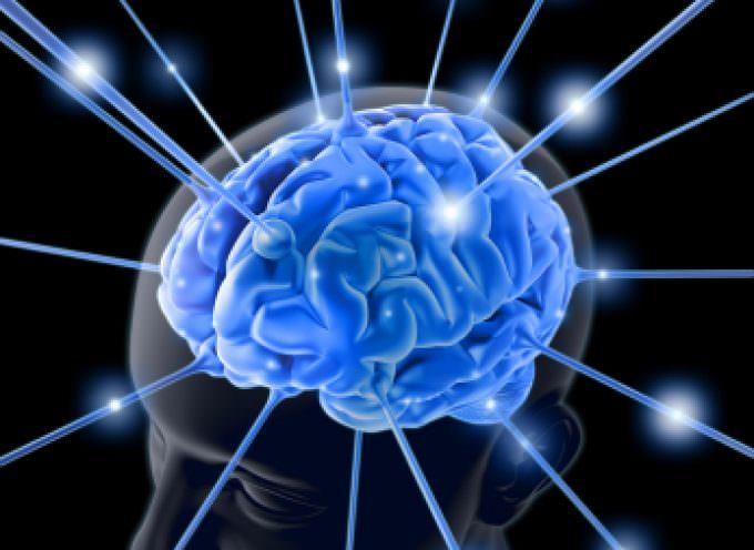 Il cervello delle donne è più rapido a cogliere gli errori