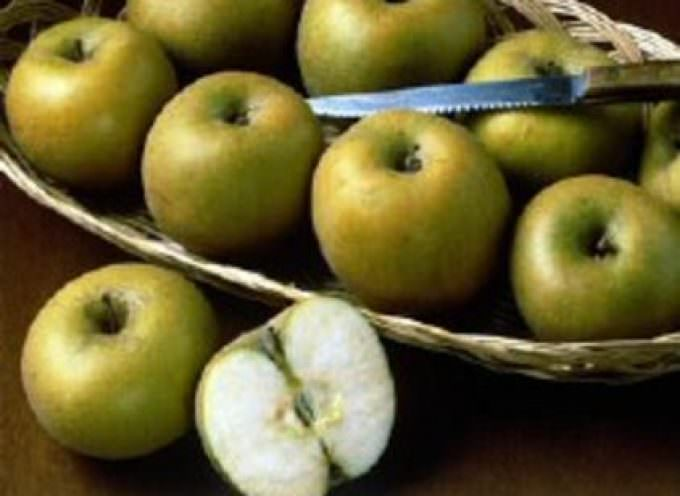 Mangiare mele irrobustisce i muscoli