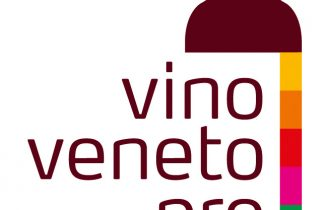 Solidarietà dei vini veneti per Haiti
