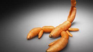Trieste: OGM, intervento del consigliere regionale Enio Agnola