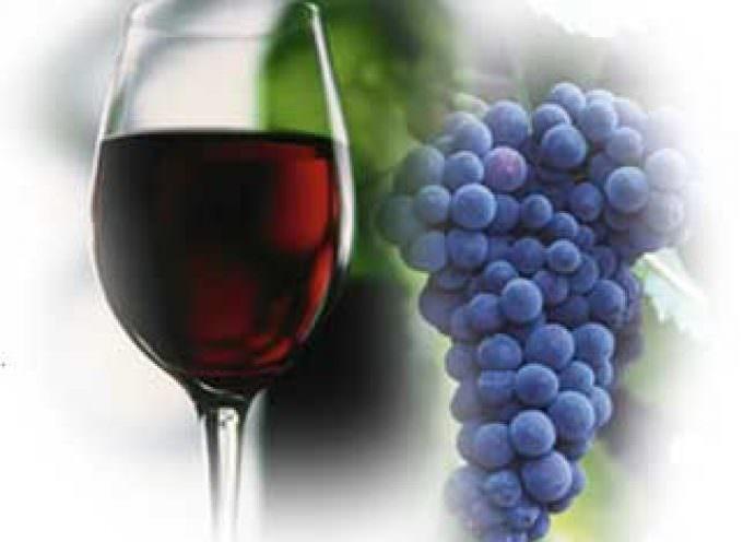 I wine lovers, i turisti più generosi