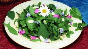 Fitoalimurgia: erbe e fiori da mangiare