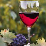 Eco-enologia: vino ed ambiente vanno a braccetto
