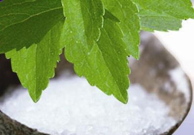 La stevia: dal Sudamerica, la pianta che sostituisce lo zucchero