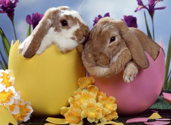 Pasqua magra: -7% consumi, acquisti oculati