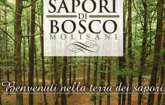 Carmine Di Marco ci racconta i Sapori di Bosco Molisani