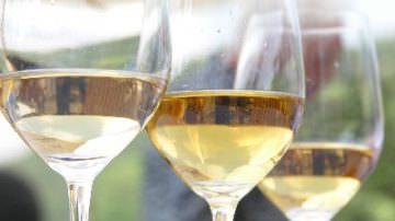 Vinitaly: un gran finale per le degustazioni della Regione Abruzzo!